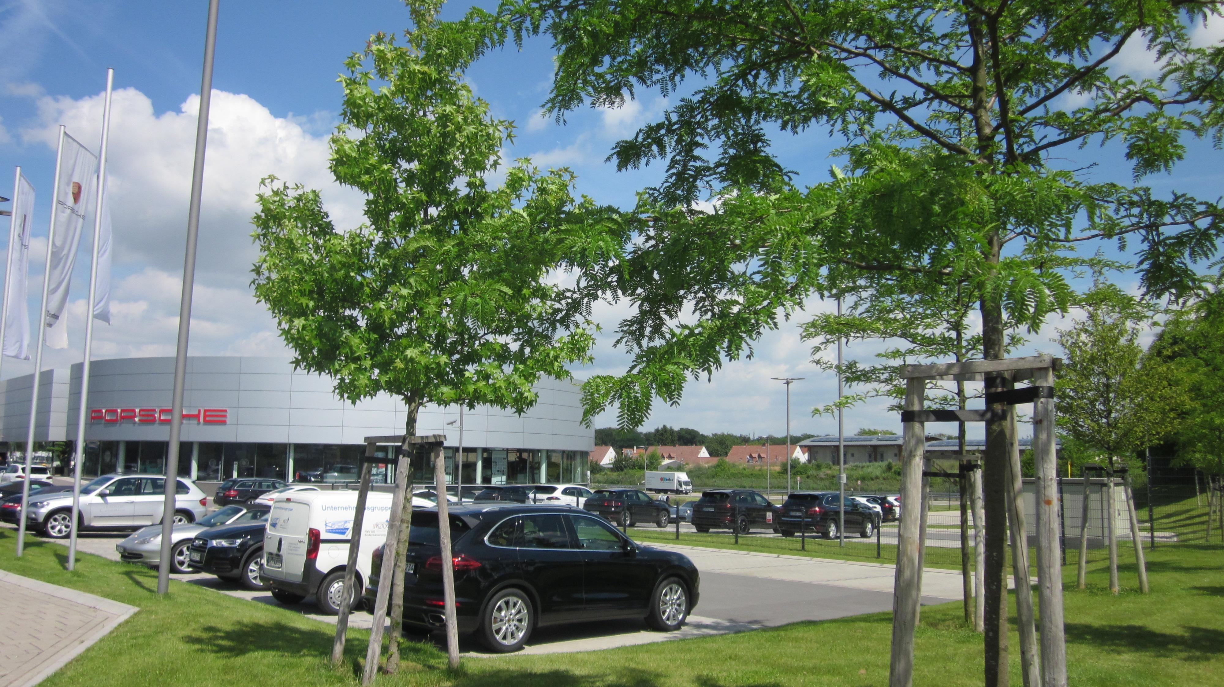 Garten Und Landschaftsbau Mannheim mannheim garten und landschaftsbau